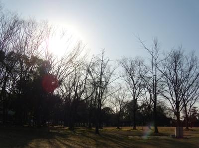 Mini_0221tamagawa